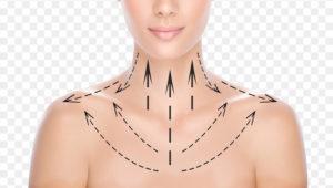 Массажные линии зоны шеи и декольте